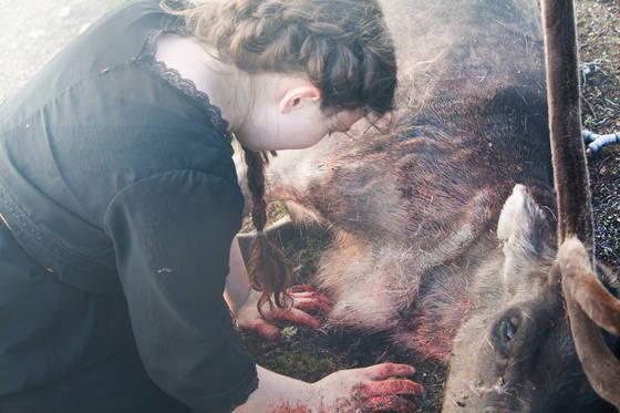 Элле-Мария в отчаянии убивает своего оленя